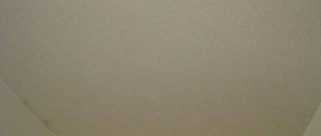 Popcorn ceilings 6